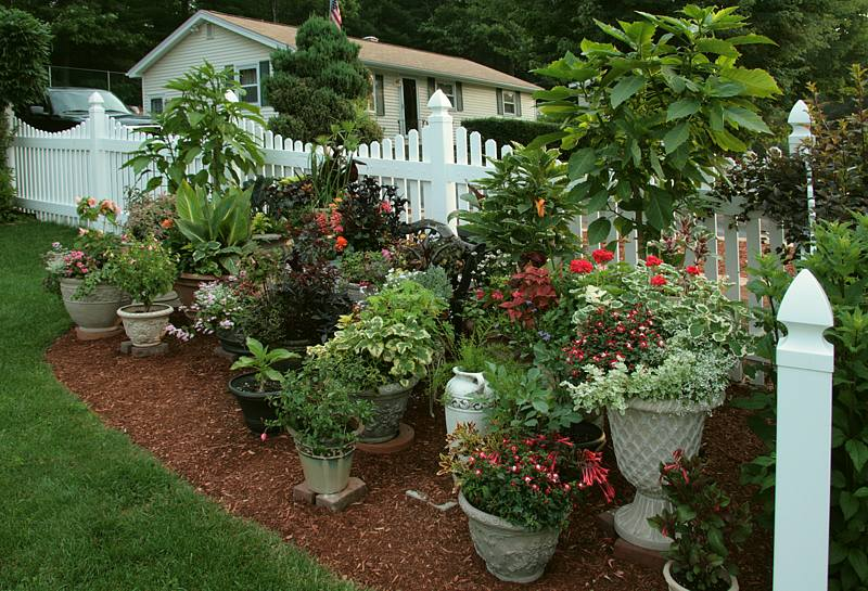 Container Garden Design you can brighten up your container vegetable garden by choosing colorful containers to grow your favorite vegetable and herbs Container Garden 2