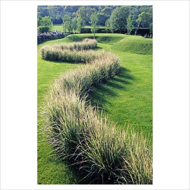 8 uses for ornamental grasses and wheat in your for Tall grass border