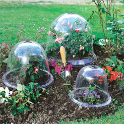 Ready set plant 4 ideas to get your seeds planted now for Garden cloche designs