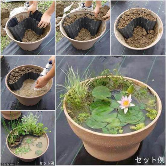Amazing Easy Way To Make A Container Pond With Plants. Found At Creative Ideas.